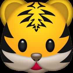 Så blir du en tiger på att göra snygga webbsidor