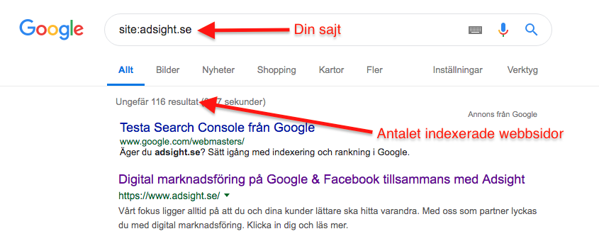 Indexerad webbplats Google