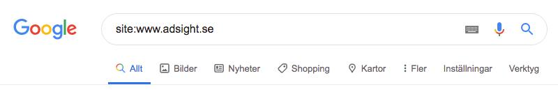 Kontrollera om din webbplats är indexerad i Google